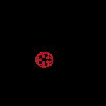 Ordine logo